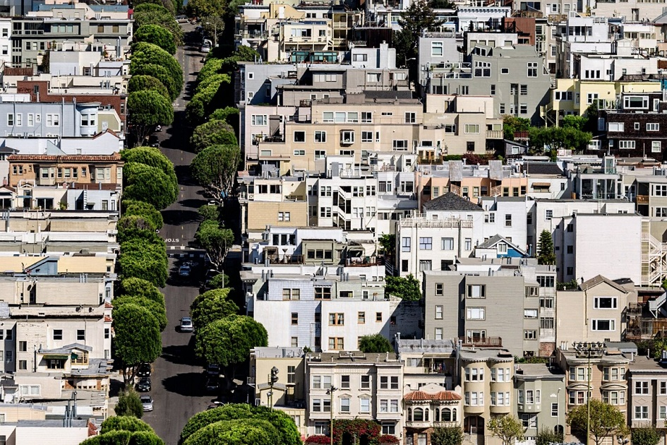 Зошто е важно да се зачуваат дрвјата во урбаните средини