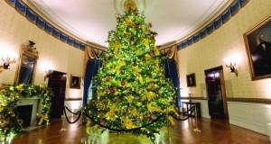 Вашингтон со верба и надеж за Божиќ