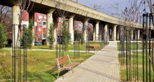 Нови дрвореди со 520 дрвја во паркот во Мичурин
