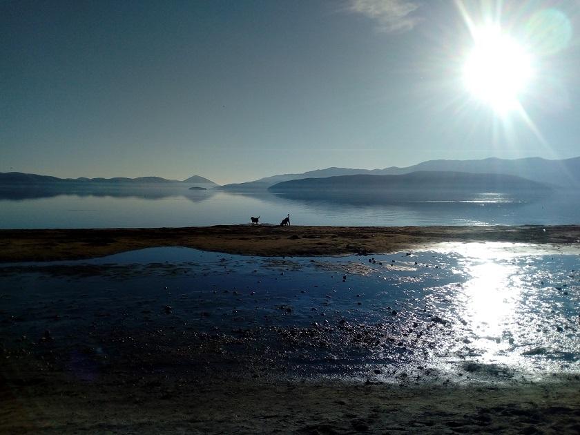 Охрид СОС: Петицијата за спас на Преспанско Езеро поднесена до Владата и МЖСПП