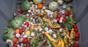 Намалување на фрлената храна за заштита на животната средина