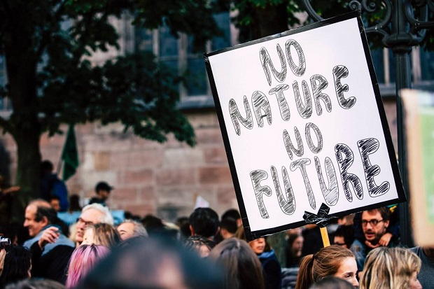 Уништувањето на биодиверзитетот доведува до почести и посериозни пандемии