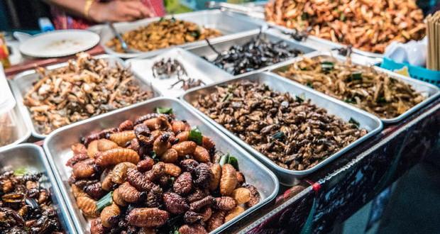 Ќе почнеме ли да јадеме инсекти поради климатските промени?