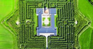 Labrinto della Mason – жива уметност на отворено
