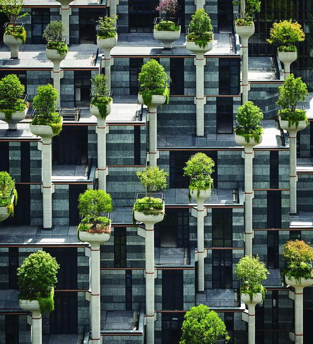 Najocekuvani gradbi na 2021-1000 drvja-Kina-2