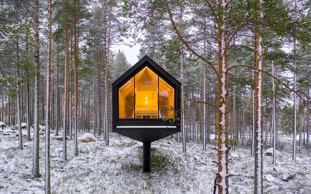 Куќа на еден столб за да не се уништува шумата
