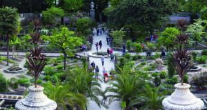Orto botanico – најстара академска ботаничка градина во светот