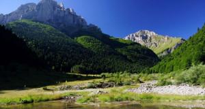 Усвоен Предлог законот за прогласување на дел од Шар Планина за заштитено подрачје