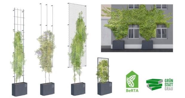 Со поддршка на Градот, озеленување на зградите во Виена