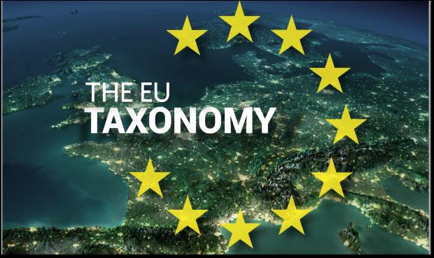 taxonomy1