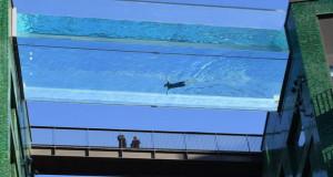 Најголемиот стаклен базен е во Лондон