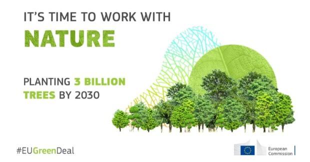 Стратегијата за шуми во ЕУ, предвидува садење на 3 милијарди стебла до 2030 година